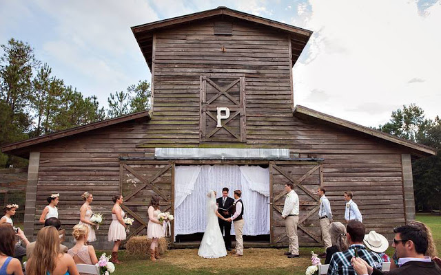 5 Unique Wedding Venues in Jax That May Surprise You   Amy
