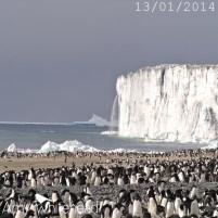 The Cape Bird Ice Cap is melting...