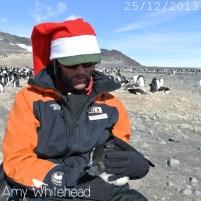 Santa catches a penguin