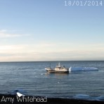 A fishing boat comes to visit