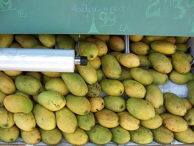 haitian_mangos