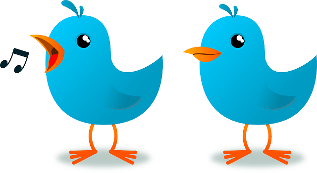 Twitter Engagement Tips: A Toolkit for Beginners