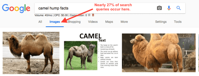 Screenshot of Google Image search results.