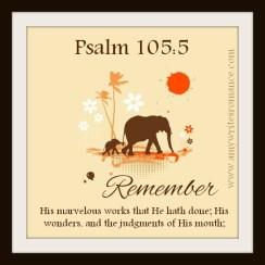 remember3