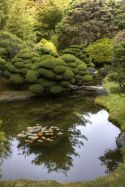 Peacefully Japanese Zen Garden Gallery Inspirations 38