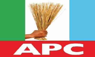 Independence Day: We Are Better Together As Nigeria - APC