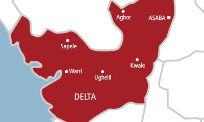 Full List Of Winners Of Delta State House Of Assembly Election 2019