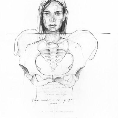 Flor Carnívora   Graphite pencil on paper   29.7x42 cm   2019