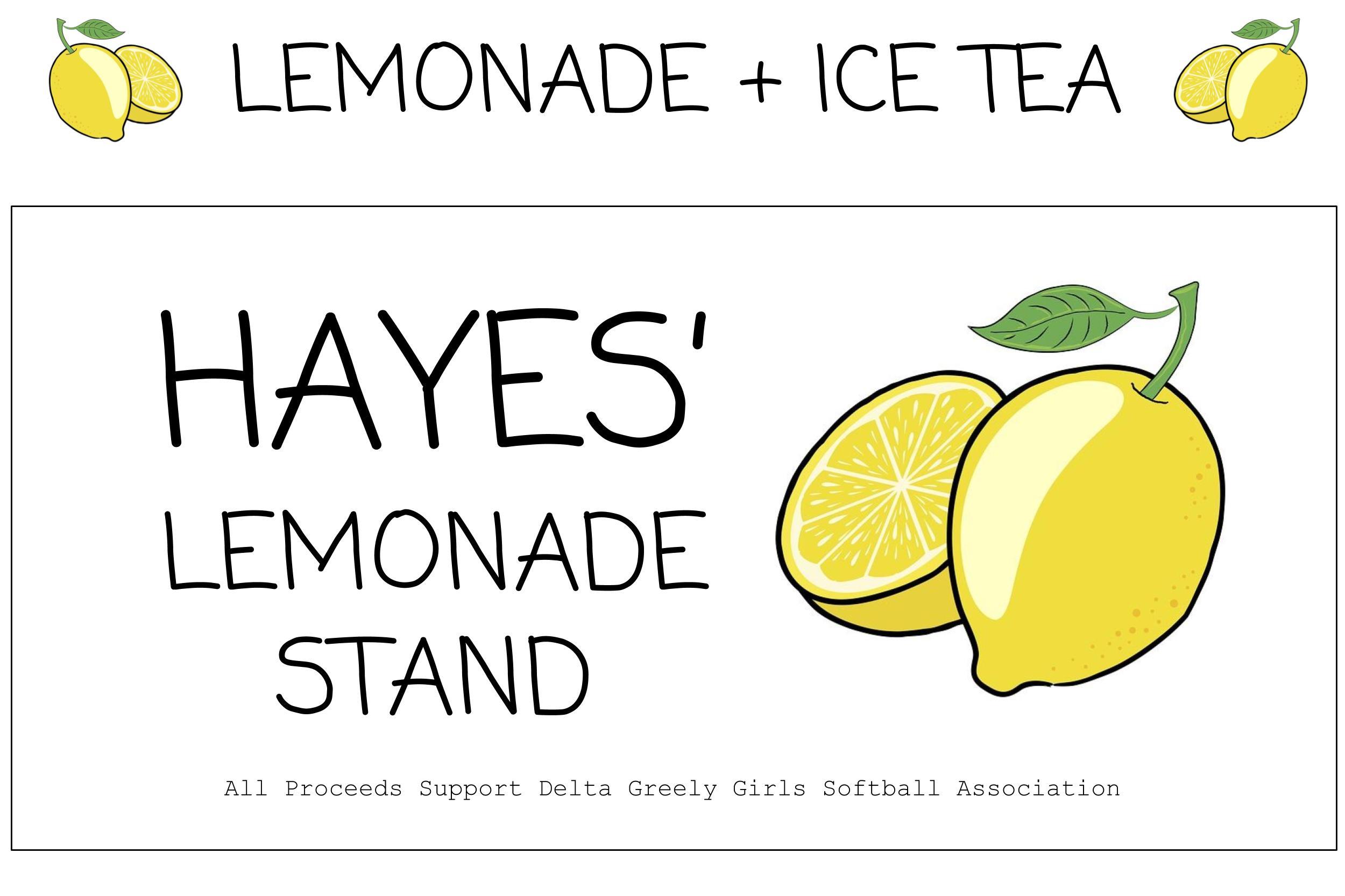 Fence Picket Lemonade Stand