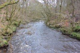 River Calder