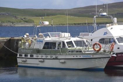Abovewater / Underwater Shetland