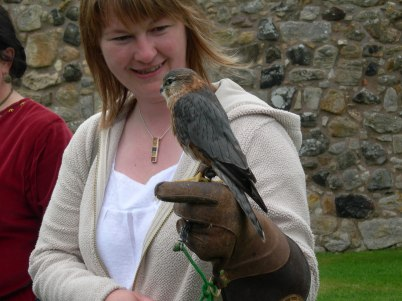 Aberdour Castle - Falconry