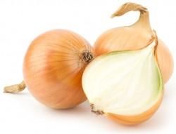 onions testosterone