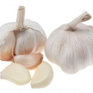 Garlic-400x400