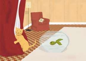 Interiores Ya sé cuidar a mi gato