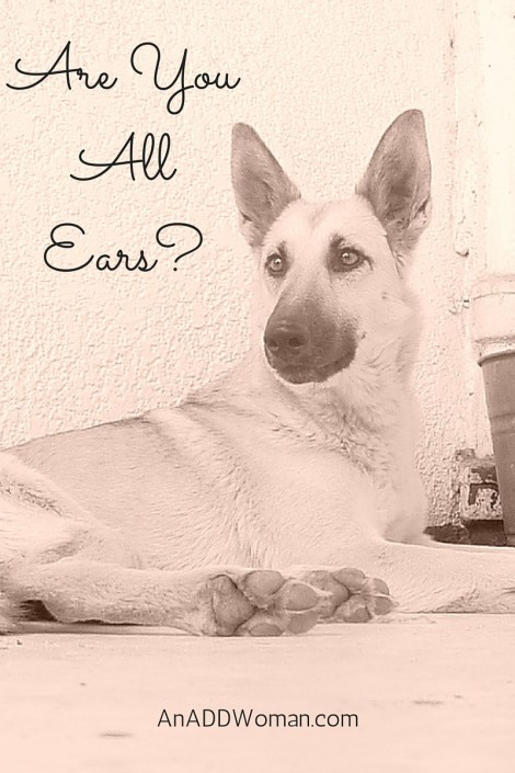 Are You All Ears?