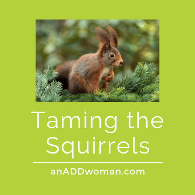 Taming the Squirrels An ADD Woman