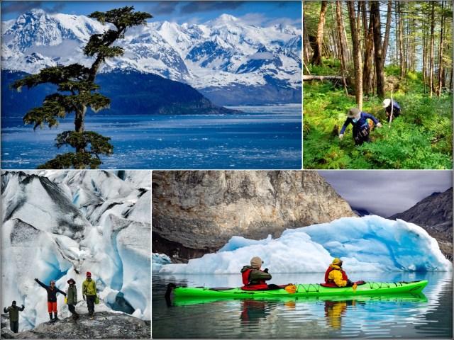 Kayak_Camp_GlacierIsland_ColumbiGlacier_Iceberg_Valdez_Wildlife_Alaska