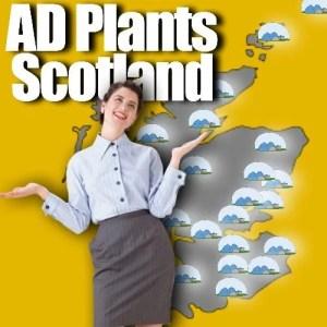 AD plants meme in Scotland
