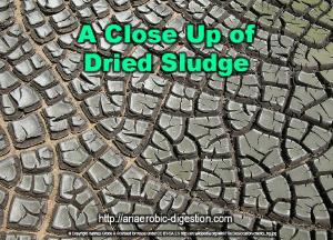 A close up of dried wastewater anaerobic digestion sludge