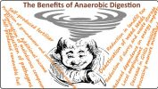 Image is a cartoon of a man looking drunk and head spinning thinking of the many benefits of anaerobic digestion.