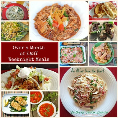 Over a Month's Worth of EASY Weeknight Recipes