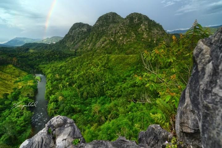 Bukit Langara 2