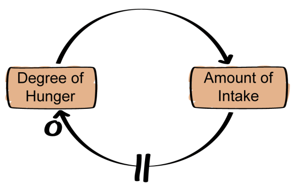 Causal loop diagramming part 2 an agile mind cld of human system ccuart Choice Image