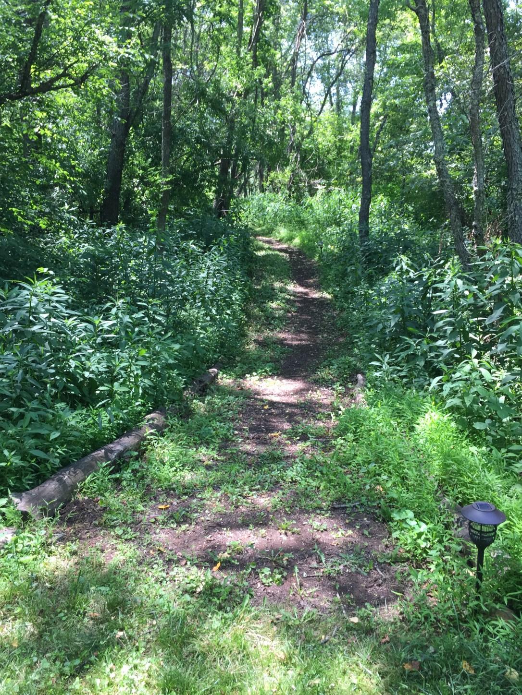 Trails at Anahata