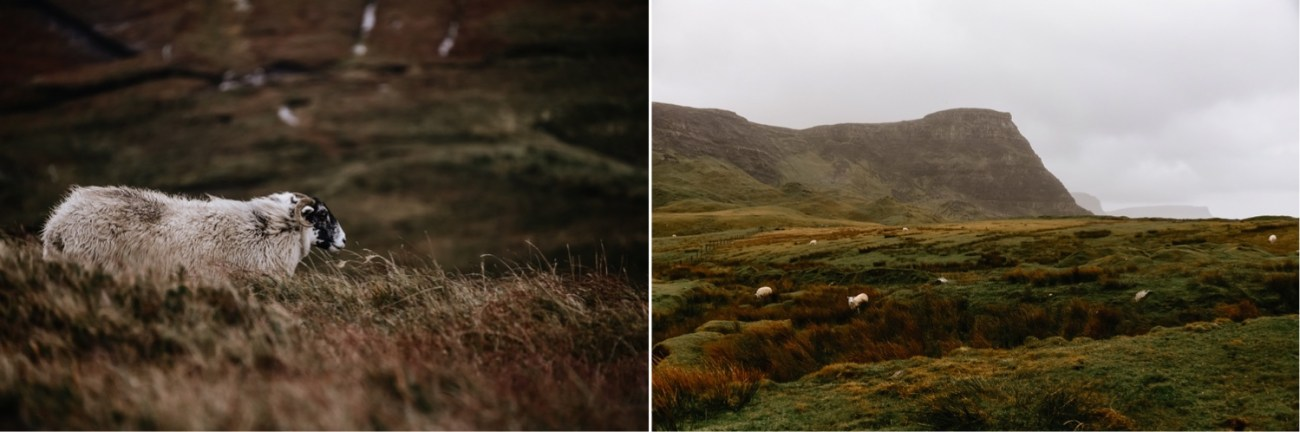 38 Isle Of Skye Elopement Photographer Scotland What To Do Isle Of Skye Scotland Adventurous Elopement