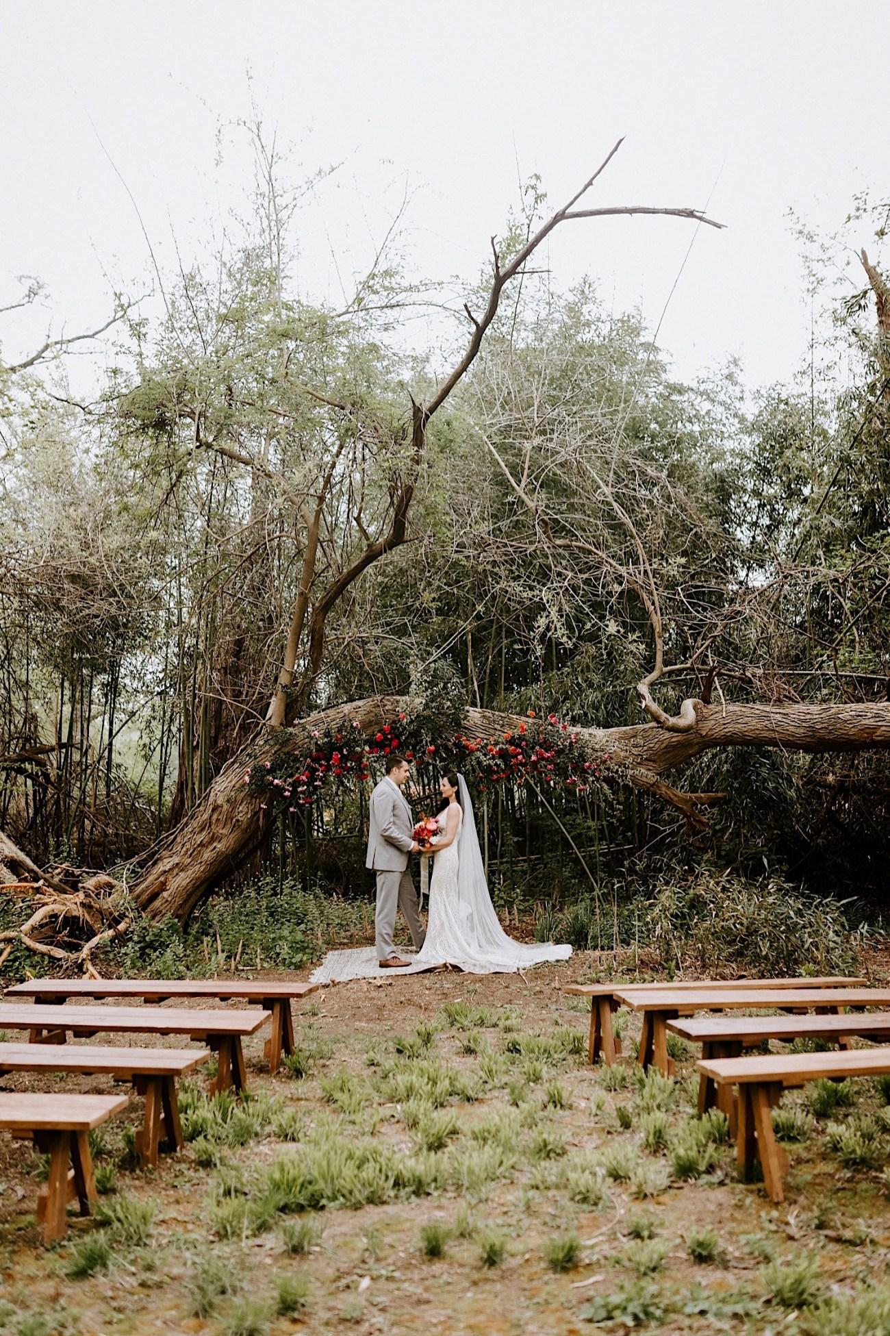 Barnsley Manor Wedding Philadelphia Wedding Photographer Hacienda Wedding Inspiration 12