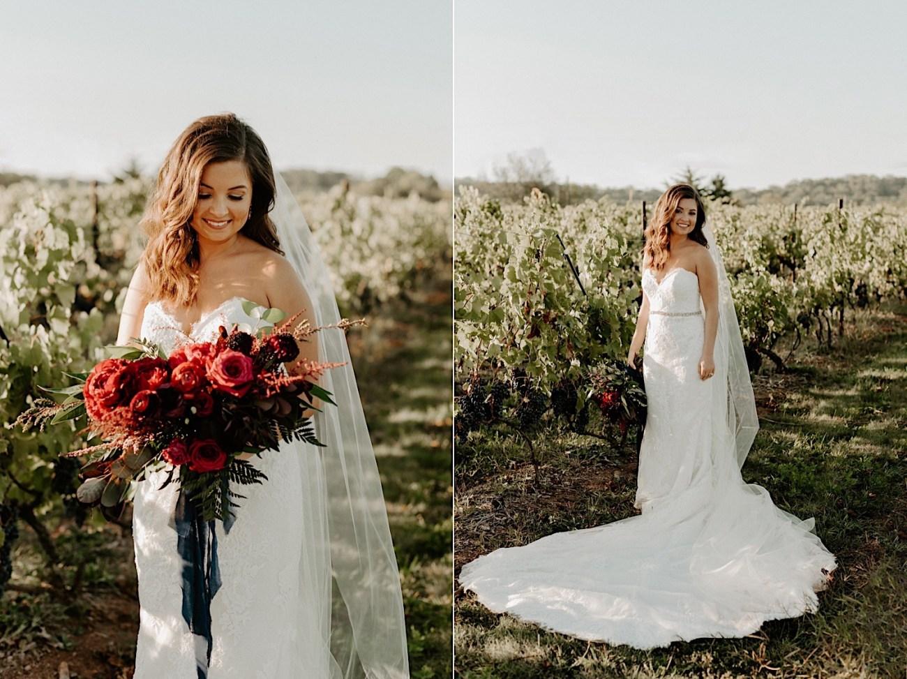 Hopewell Valley Vineyards Wedding New Jersey Wedding Photographer 21