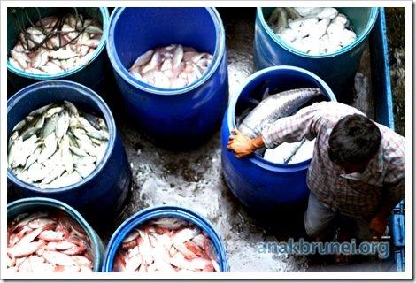 Pasar Gadong Revisited 004