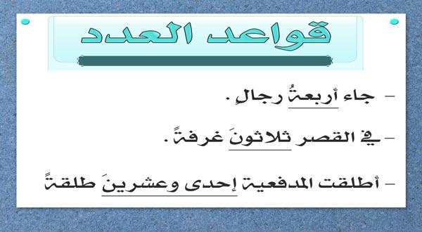 بحث عن العدد والمعدود في اللغة العربية تعريف إعراب