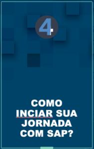 sap ebook iniciante