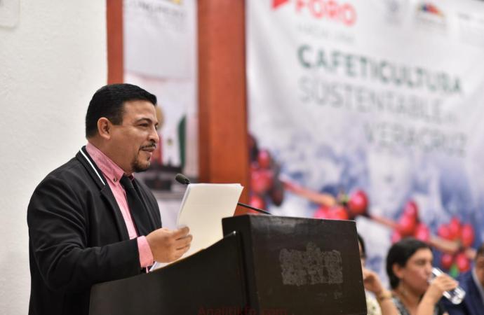 En los Tuxtlas, producimos uno de los mejores cafés de México: Gómez Cazarín