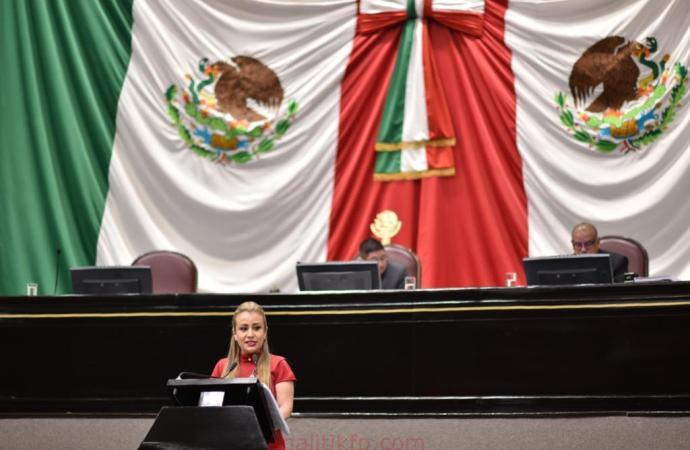 Avala Congreso actualización de padrones estatal y nacional del café