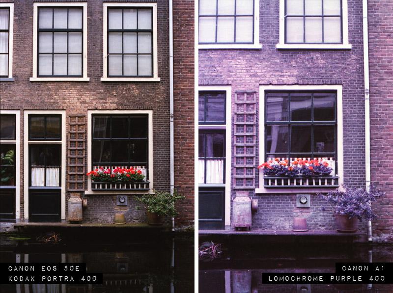 Delft, Lomochrome purple, 35mm film