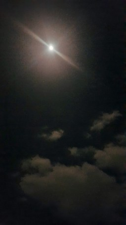 La lumina nopții
