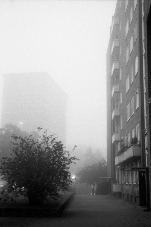 foto der woche, analoge fotografie hamburg, herbstmorgen, nebel, kodak, schwarz-weiß