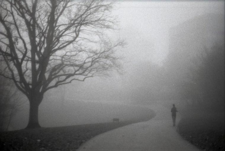 Nebelsport