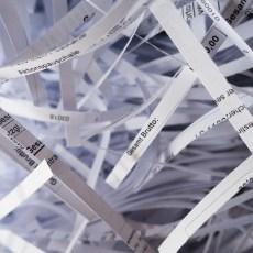 Blatt für Blatt in die richtige Richtung – Papierloses Büro