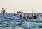 Το αλιευτικό έγκλημα