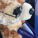 Gartner Peer Insights Marly the Meerkat