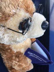 Gartner Peer Insights teddy bear