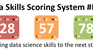 Data Skills Scoring System