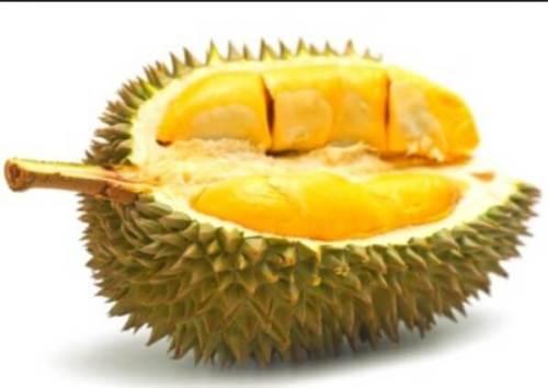 Durian Musang King Malaysia