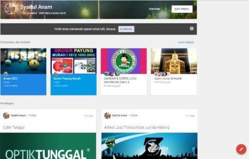 Gambar Profil Google Plus Syaiful Anam