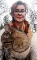 3. pisica