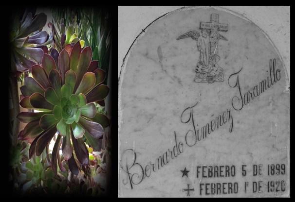 Bernardo Jiménez Jaramillo